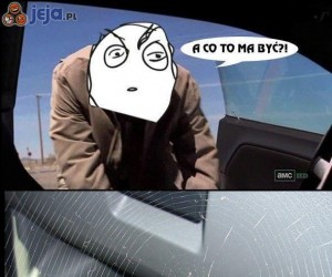 Reakcja na pająka w samochodzie