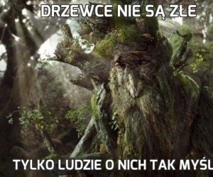 Drzewce nie są złe