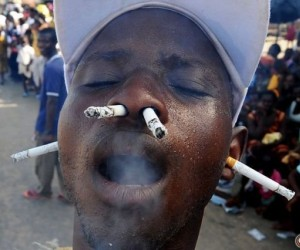 Tytoniowy smok