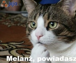Melanż, powiadasz?