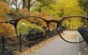 Wizja okularnika