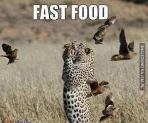 Naturalny fast-food