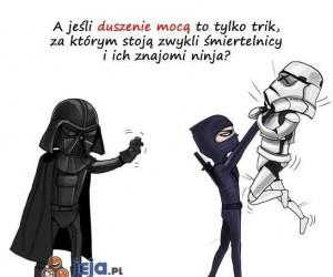 Niech ninja będzie z Tobą!