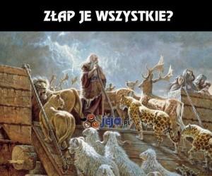 Noe, chyba Ci nie wyszło...