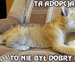 Ta adopcja, to nie był dobry pomysł