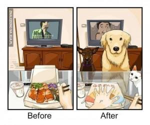 Życie przed posiadaniem psa i życie z psem