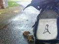 Moi pomocnicy podczas gry w golfa