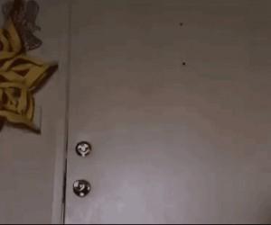 Jak wchodzi do domu moja dziewczyna