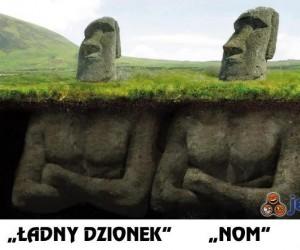 """""""Ładny dzionek"""""""