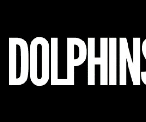 Delfiny są niebezpieczne