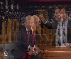 Radość Donalda podczas smyrania
