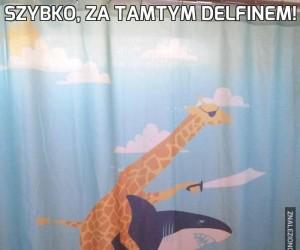 Szybko, za tamtym delfinem!