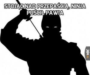 Stojąc nad przepaścią, ninja puścił pawia