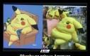 Pikachu po roku w Ameryce