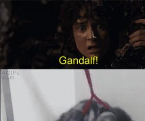 Nieeeeeeeeeeeee!