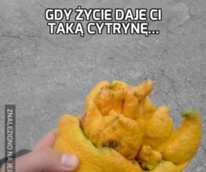 Gdy życie daje Ci taką cytrynę...