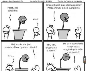 Chcesz kupić mięsożerną roślinę?