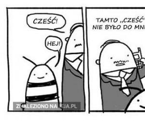 Niezręczna pszczoła i chybione przywitanie