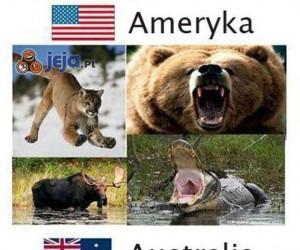 Najniebezpieczniejsze gatunki świata