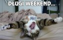 Długi weekend...