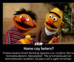 Homo czy hetero?