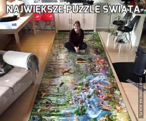 Największe puzzle świata