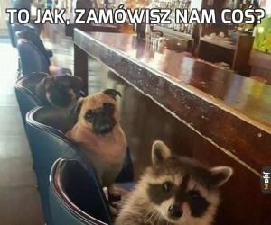 To jak, zamówisz nam coś?