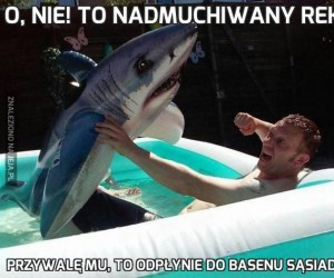 O, nie! To nadmuchiwany rekin!