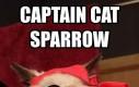 Captain Cat Sparrow