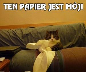 Ten papier jest mój!