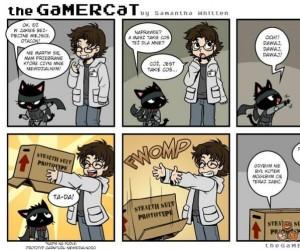 Kot gracz i kamuflaż