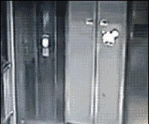 Pijany facet vs winda