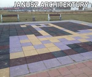 Janusz architektury