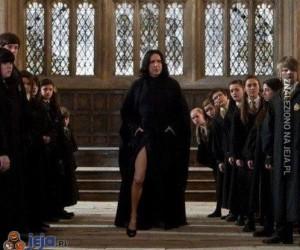 Sekrety Snape'a