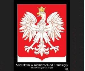 Wracajcie do Polski