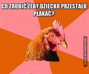 Nieśmieszna kura