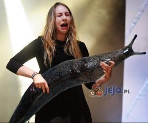 Gitarzyści i oślizgłe ślimaki