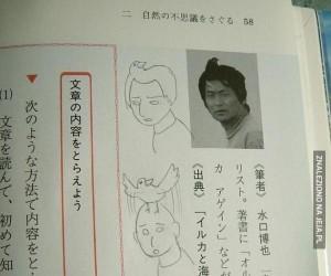 Historia pewnej fryzury