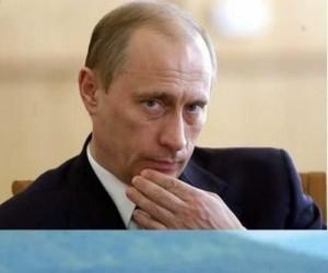Putin i niedźwiadek