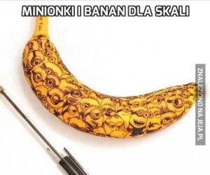 Minionki i banan dla skali