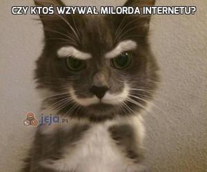 Czy ktoś wzywał milorda internetu?