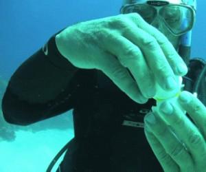 Rozbijanie jajka pod wodą