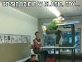 Co się dzieje w klasie, gdy...