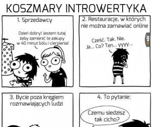 Koszmary introwertyka