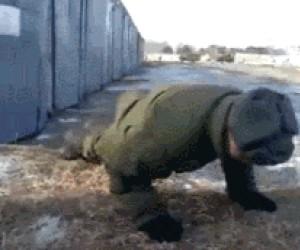 Ruski test na sprawność
