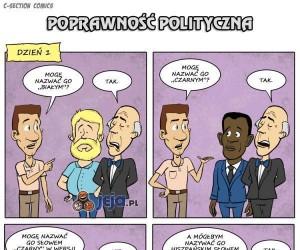 Poprawność polityczna - co z nią nie tak?