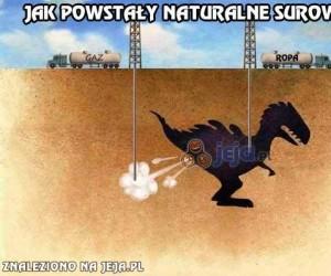 Jak powstają surowce naturalne