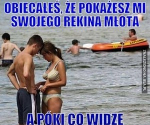 Co to za glonojad?