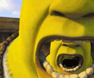 Shrek infinity