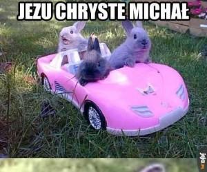 Michał, błagam cię!